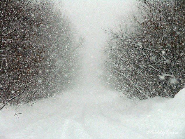 blizzard-bad